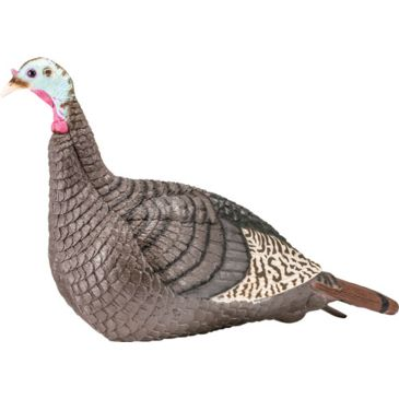 Hunter&039;s Specialties Strut-Lite Hen Turkey Decoy 100001after Mail-In Rebate Save 39% Brand Hunter&039;s Specialties.