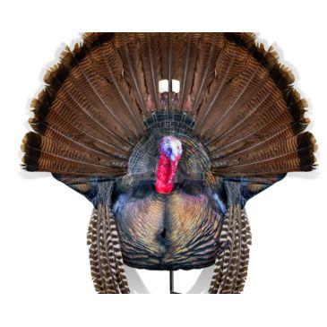 Montana Decoy Co. Turkey Decoy Wiley Tomnewly Added Brand Montana Decoy Co..