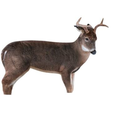 Montana Decoy Co. Freshman Deer Buck Decoy Save 18% Brand Montana Decoy Co..