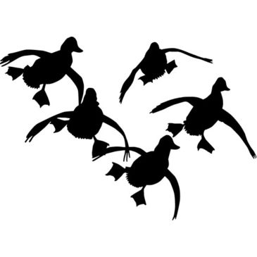 "Outdoor Decals Jukin Ducks 6""x6"" White Save 17% Brand Outdoor Decals."