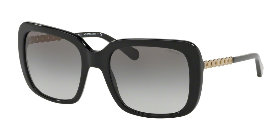 0d5f6ab9ade Coach L1026 HC8237 Sunglasses