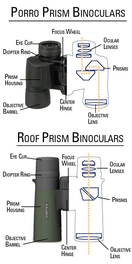 Porro vs. Roof Prism Binoculars Diagram