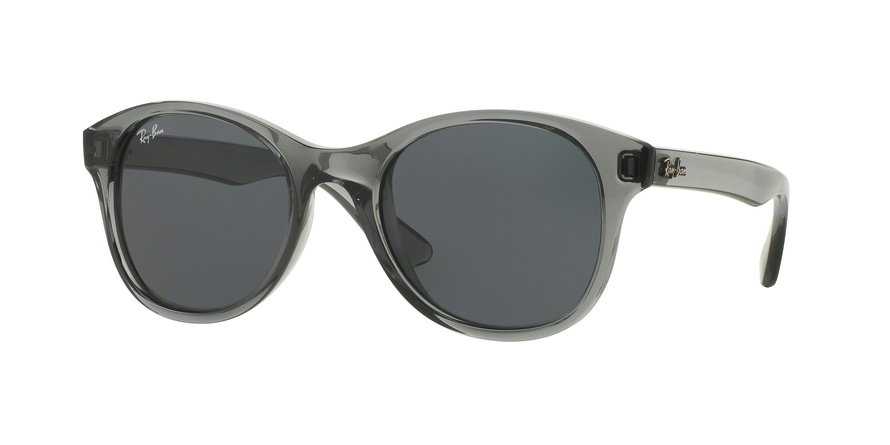 ec28432fb0 Ray-Ban RB4203 Sunglasses