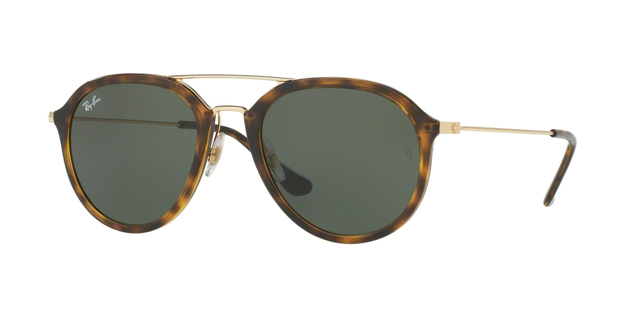 1a1fcb937e Ray-Ban RB4253 Sunglasses
