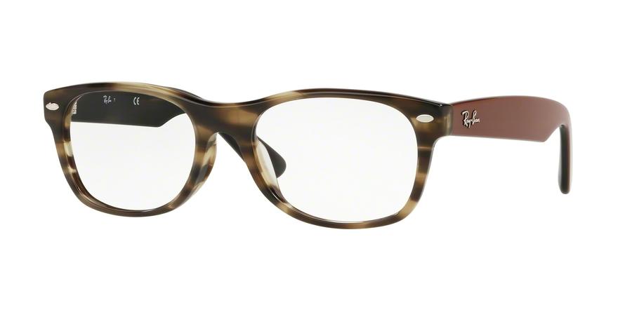 3674ba75e4b Ray-Ban RX5184F Eyeglass Frames