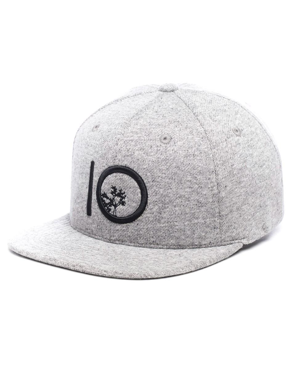e631ae40581 Tentree Canopy Snapback Hat
